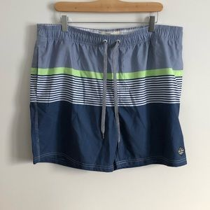 Men's Bathing Suit Blue Striped